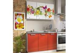 Кухня Роза фотопечать Цветы - бабочки 6 (комплект №1 1200 мм)