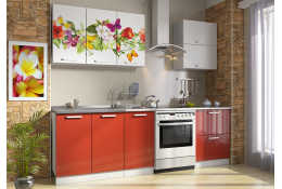 Кухня Роза фотопечать Цветы - бабочки 6 (1800 мм)